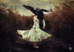 """""""The Noonday Demon"""" (© 2016 by Keren Stanley) (keren_stanley) Tags: art birds painting surrealism dreams owl depression expressive nightmare melancholy conceptual fineartphotography conceptart mentalillness vintagedress victorianstyle conceptualphotography"""