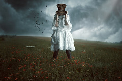 Hat (iblushay : Thank you for visiting and the faves) Tags: photomanipulation photoshop photo image cloudy outdoor illusion deviantart imageediting poppyfield