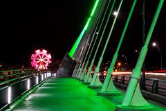 lowry bridge (selo0901) Tags: bridge ferriswheel lowry stpatricksday bettydangers