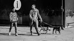 ... two & two!!! ( ... double couple!!! ) (Fede Falces ( ...... )) Tags: barcelona friends 2 two people bw pet beach dogs contrast cool couple noiretblanc walk candid streetlife playa olympus plata streetphoto urbanlife walkingthedogs doublecouple littledoglaughednoiret