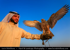 Kuwait - Kuwaiti Desert - Falcon and its falconer (© Lucie Debelkova / www.luciedebelkova.com) Tags: world trip travel vacation holiday man bird tourism beautiful wonderful person nice fantastic tour gulf place awesome muslim middleeast visit location tourist arabic arab journey falcon arabia stunning destination kuwait traveling lovely visiting exploration incredible emirate touring breathtaking gcc kuwaiti falconry middleeastern falconer arabistan arabcountries stateofkuwait arabianpeninsula alkuwayt kuvait kuwayt kuvajt arabstates luciedebelkova شبهالجزيرةالعربية wwwluciedebelkovacom