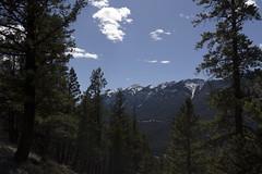 Banff, Tunnel Mountain Hike, April 9 2016 (5)_e_apr_11_16 (Velates) Tags: canada mountains alberta rockymountains banffnationalpark