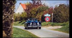 Jaguar XK150 Roadster (Laurent DUCHENE) Tags: 150 jaguar roadster xk150 xk 2016 rallyedaumale