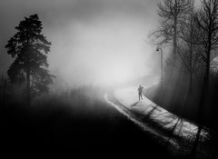 (Svein Nordrum) Tags: road light shadow bw silhouette misty fog mood running explore explored