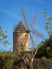 Windmhle (Burnett0305) Tags: spain olympus mallorca spanien omd majorca em1 balearicislands balearischeinseln olympusomdem1 mzuikodigitaled40150mm128pro