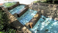 Fort Worth Water Gardens (dckellyphoto) Tags: shadow plants water fountain concrete waterfall texas shadows modernart sunny lookingdown philipjohnson fortworth urbanpark 2016 johnburgee fortworthwatergardens
