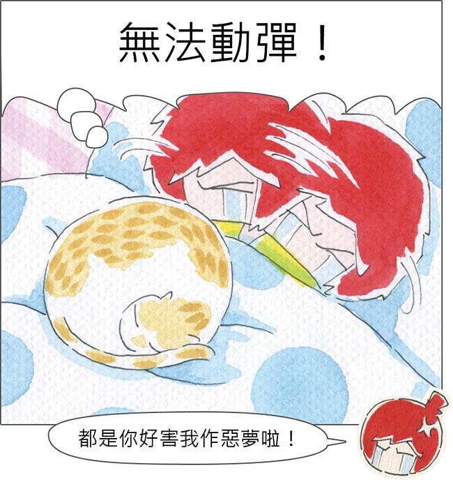 家裡來了一隻貓 鬼壓床