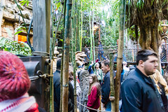 20151229-080145_California_D7100_8350.jpg (Foster's Lightroom) Tags: california us unitedstates arts disney northamerica movies rides anaheim darkrides indianajones adventureland themeparks disneylandpark indianajonesadventure us20152016
