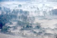 Airuno_7 (Riboli Alessandro) Tags: light rio fog alberi landscape nikon alba fiume natura nikkor sole nebbia atmosfera luce ai paesaggio lecco magia 80200 mattino foschia d700 airuno