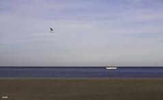 Por aire, tierra y mar: VIVE! (jlpezrecio) Tags: beach nature happy freedom playa almera cabodegata