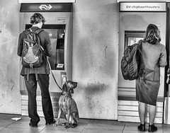 Hi there..... (fnoothout) Tags: tickets blackwhite utrecht centraltrainstation nikond7100