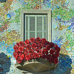 Sant Jordi 2016, Barcelona (cpcmollet) Tags: barcelona city flowers roses urban color building beauty architecture casa arquitectura nikon bcn edificio catalonia unesco explore gaudi gaud catalunya jordi sant antoni batll 2016