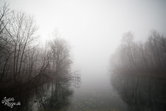 Misty Lake II (judithrouge) Tags: morning trees mist lake reflection water fog see wasser nebel foggy mysterious mystical dreamy melancholy bäume mystic reflektion morgens mystisch morgenstimmung verträumt melancholie neblig mysteriös