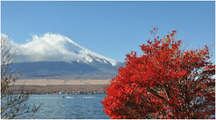 76 (Joe Nathan78) Tags: autumn fall japan automne fuji mountfuji japon yamanakakolake