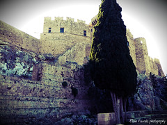 castle of knights GR (braziliana13) Tags: outdoor greece rodos rhodes   greekhistory  castleofknights