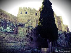 castle of knights GR (braziliana13) Tags: outdoor greece rodos rhodes ελλάδα κάστρο greekhistory ιστορία castleofknights ρόδοσ ιστορικό μέροσ ιπποτών