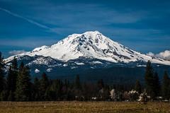 Mt Shasta (garypat5) Tags: mountain snow landscape mtshasta mccloud mountainpeak garypat5