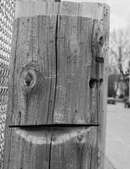 smiling pole (jlp771) Tags: face cut pole poteau bois visage