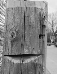 smiling pole (jlp771) Tags: face cut pole poteau bois visage