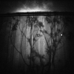 Tree Shadow (rustman) Tags: blackandwhite bw square iso3200 grain 11 pinhole worldwidepinholephotographyday 22mm gf1 f128 dynamicblackandwhite panasoniclumixgf1 pinwide wanderlustpinwide