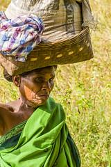 Alnar - Bastar - India (wietsej) Tags: woman india basket chhattisgarh minoltadynax7 bastar alnar minolta100mmf28dafmacro
