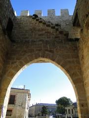 Sasamn (santiagolopezpastor) Tags: espaa wall spain medieval walls burgos espagne middleages muralla castilla castillaylen murallas provinciadeburgos
