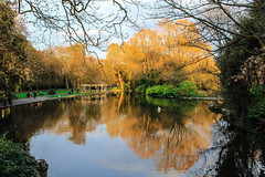 st stephen's green - Dublin (floragiannone) Tags: park ireland dublin reflection green
