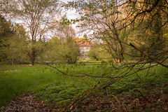 366-119 (bine77) Tags: wood nature canon see pond cabin natur haus villa pancake 24mm wald projekt weiher 366 eos100d