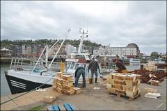 Honfleur 14 (GK Sens-Yonne) Tags: port normandie honfleur bateau quai calvados bassin pche pcheurs coquillesstjacques
