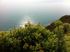 Trip to Tuscany, view on Harbor of La Spezia (Andre Sartori) Tags: trip sea italy spring cloudy tuscany laspezia