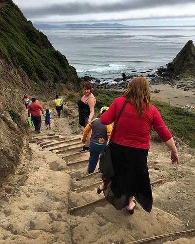 Peligro de caída #beach #landscape #chile #valdiviacl #curinancochile