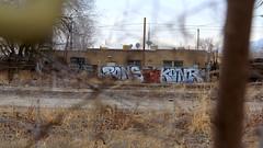 PONS KONR (trentcall) Tags: graffiti utah cne saltlakecity ides pons 36er dekoi konr aneml
