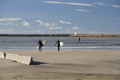 Surfing in January! Les Saintes Maries de la Mer, Camargue (IAGD+P) Tags: pink horses france flamingoes flamingo pinkflamingos flamandrose chevaux camargue saintesmariesdelamer lessaintesmariesdelamer chevauxcamarguais