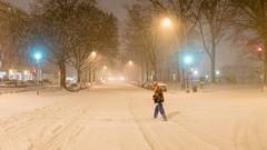 Blizzard'16-88.jpg (MudflapDC) Tags: snow storm us dc washington districtofcolumbia unitedstates melissa sw blizzard