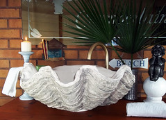 Grey Giant Clam Shell SINK 22 (LittleGems AR) Tags: ocean sea sculpture sun beach home statue giant bathroom shower aquarium soap sand bath sink natural contemporary unique decorative shell craft style toilet towel clam basin special shampoo taps wash ornament gift seashell pearl nautical reef decor spa luxury opulent fossils oneoff clamshell mollusks cloakroom bespoke tridacna sculpt crafted gigas facetowel