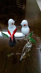 Pssaros de vidro - enfeites (carlos.ufmg) Tags: glass birds vidro samsung ornaments enfeites pssaros galaxys5