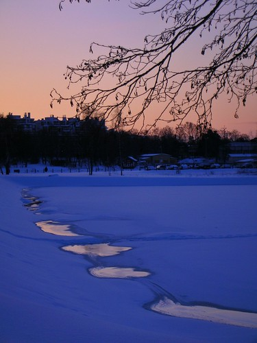 Frozen sea on a winter morning