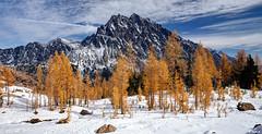 Mt. Stuart (keithc1234) Tags: larches mtstuart alpinelakeswildernessarea