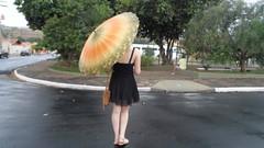 35/366 Guard orange rain (JessicaBelotto) Tags: orange black rain model pessoa foto ar natureza laranja guard dia preto days modelo honey jardim rua ao fotografia projeto cenário livre saia guardachuva fotografando fotografico 366 366daysofhoney 366diasnoano