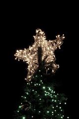 Xmas (mgigantecaraballo) Tags: xmas light espaa tree star navidad spain len estrella astorga