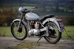BSA C11 (cloud_hopper) Tags: motorbike motorcycle beezer bsa c11