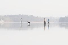 Four legs are better than two on ice (StoraDan) Tags: highkey brunnsviken fotosondag fs160207