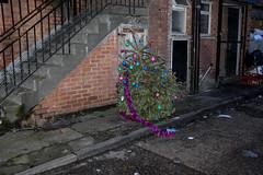 The last of Christmas (Gary Kinsman) Tags: christmas london abandoned night stairs evening back alley sad flash christmastree backstreet finish rubbish end discarded grime kentishtown 2016 nw5 serviceroad patshullroad fujifilmx100t fujix100t
