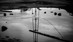 Reflejos ondulados. (natudecheshire) Tags: reflection tower water puddle agua waves torre stones ondas reflejos piedras charco