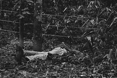 1051 (.danilo almeida) Tags: portrait bw texture monochrome drunk sleep retrato spyshot pb texturas fotojornalismo photojournalim