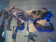 IMG_4262 (FigmentJedi) Tags: minnesota dinosaurs sciencemuseumofminnesota