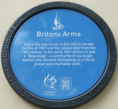 [39719] Norwich : Britons Arms (Budby) Tags: heritage history plaque pub norfolk norwich information eastanglia timbered publichouse