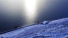 IMGP9139 (Benjamin Hurrell) Tags: winter snow switzerland suisse suiza hiver nieve vineyards lakegeneva vaud lavaux hier laclman nige