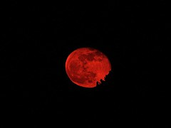 Bad Moon Rising (Deepgreen2009) Tags: red sky moon colour night dark rising low bad east lunar oblate