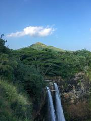 IMG_1618 (TruffShuff) Tags: 2016 hi hawaii kauai wailuariverstatepark january2016